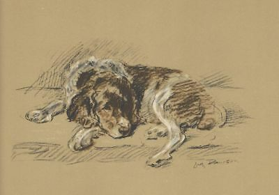 Welsh Springer Spaniel - Dog Print - 1937 L. Dawson