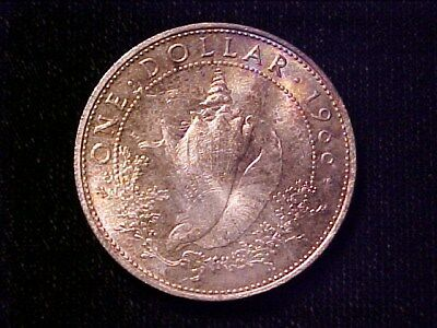 Bahamas Conch Silver Dollar 1966 Ch Bu Attractive Toning Nice