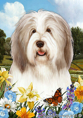 Garden Indoor/Outdoor Summer Flag - Fawn & White Bearded Collie 184831