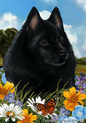 Garden Indoor/Outdoor Summer Flag - Schipperke 181011