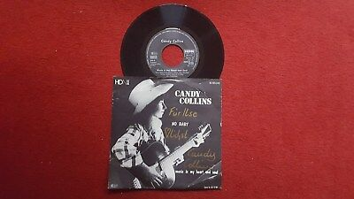 """7"""" Candy Collins - No Baby! Country, Folk, World! + Autogramm(?)"""