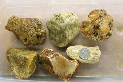 J2B2:  Indonesian Star Agate Rough, 6 Pieces 4.0 lbs.