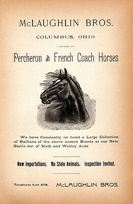 1893 McLAUGHLIN BROS, COLUMBUS, OHIO PERCHERON FRENCH COACH HORSES ADVERTISEMENT