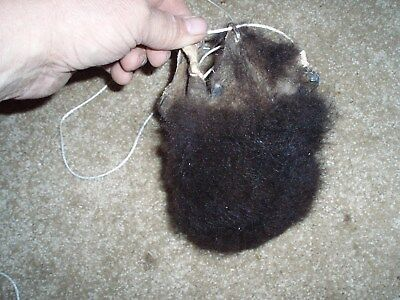 bison scrotum real buffalo Ball bag oddity nutsack gag gift mountain man bag H