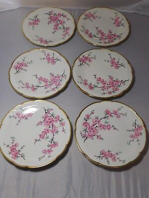 LOT of 6 MITTERTEICH BAVARIA GERMANY DESSERT PLATES 05L FLORAL DESIGNS