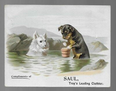 Saul Clothier Color Advertising Trade Card Spitz & Terrier Dogs Vintage