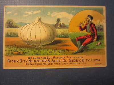 1880's - Sioux City Nursery & Seed Co. Sioux City - Victorian TRADE CARD - IOWA