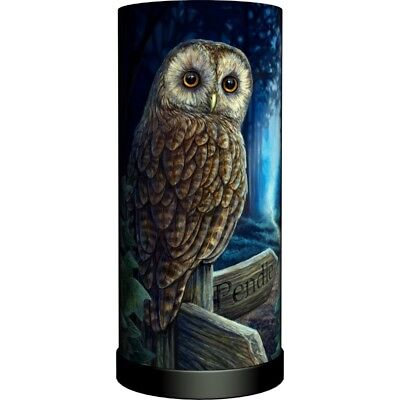 WAY OF THE WITCH Electric Lamp Lisa Parker owl wicca pagan witch witchcraft