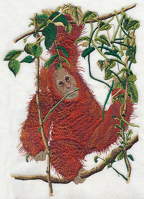 Embroidered Long-Sleeved T-Shirt - Young Orangutan O1003 Sizes S - XXL