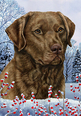 Large Indoor/Outdoor Winter Flag - Chesapeake Bay Retriever 15070