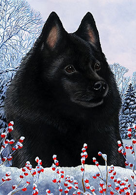 Large Indoor/Outdoor Winter Flag - Schipperke 15101