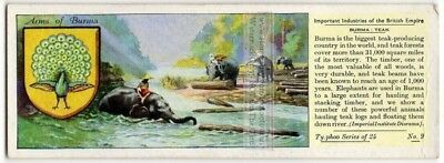 Teak Wood Lumber From Burma Myanmar South East Asia c80 Y/O Trade Ad Card