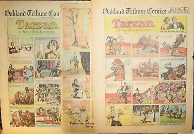 TARZAN by Edgar Rice Burroughs and Hal Foster - 12 FULL-page Sundays 1932 - 1936
