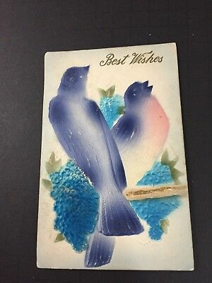 1910 era Best Wishes Antique Postcard Blue Jays Singing Embossed