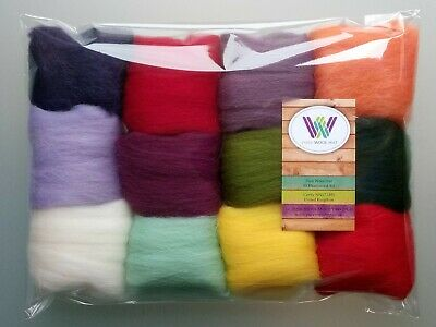 60g Pure Wool Tops for Felting 12 colours, Set F