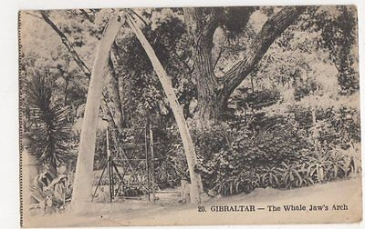 Gibraltar, The Whale Jaw's Arch Postcard, B111