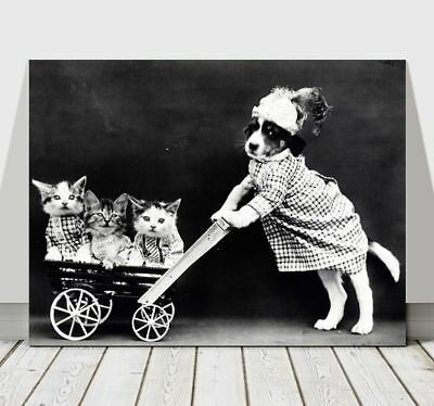 CUTE VINTAGE B&W Dog Pushing Kittens in Cart - CANVAS ART PRINT POSTER - 16x12""