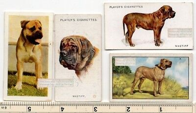 Bullmastiff Dogs 4 Different Vintage Ad Trade Cards 2nd