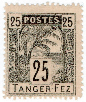 (I.B) French Morocco Local Post : Tanger-Fez 25c