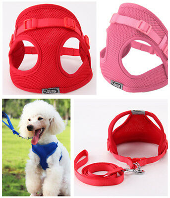 Cute Tiny Dog Harness Lead Set Teacup Mini Puppy Chihuahua Rabbit Cat Toy