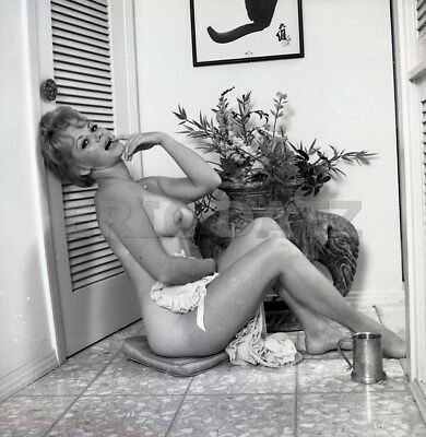 1960s Ron Vogel Negative, busty nude blonde pin-up girl Christine Reid, t986114