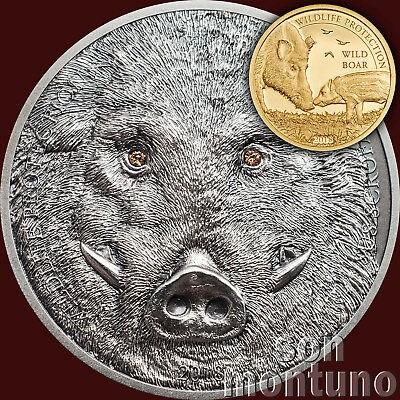 SILVER & GOLD 2 COIN SET - 2018 Mongolia WILD BOAR Wildlife Protection