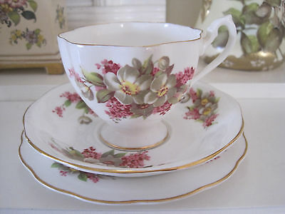 Pretty Vintage Queen Anne Floral Fine Bone China Trio
