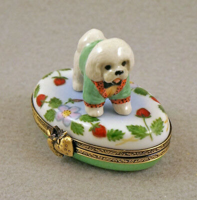 New French Limoges Box Dressed Up Bichon Frise Dog Puppy On Strawberry Box