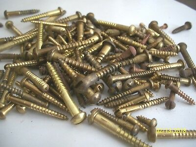 "135 Vintage Solid Brass Wood Screws With Round, Reg. Slot Heads, 1/2""- 1 1/2"" #1"