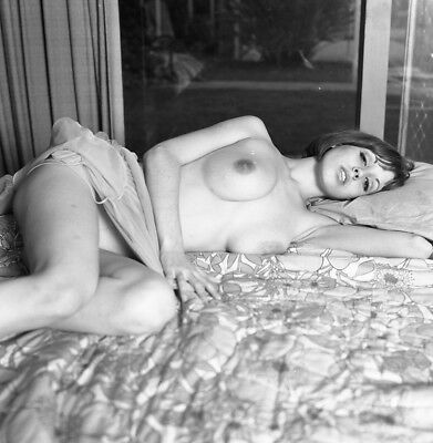 1960s Ron Vogel Negative, busty nude pin-up girl Cathy Whitmore on bed, t992195