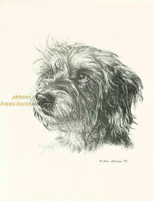 #166 WIRE HAIRED DOXIE Dachshund  print * Pen and ink drawing by Jan Jellins