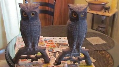 Pair Antique Cast Iron Owl Andirons Glass Eyes With Supports 15 1/2""