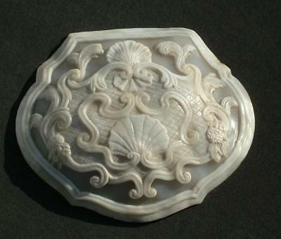 Beautiful Antique Carved Shell Scrimshaw Sailors Piece 18Th / 19Th Century