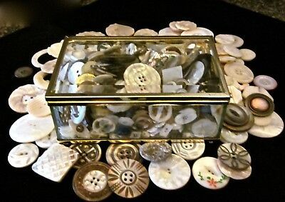 Huge Lot Antique, Vintage, Mid-Century Carved & Fancy Mother Of Pearl Buttons +