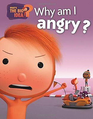 Why am I Angry? (What's the Big Idea?) New Hardcover Book