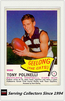 RARE FIND-1966 VFL Scanlens Card #7 Tony Polinelli (Geelong)-Near Mint