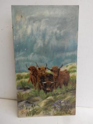 really old PAINTING oil canvas highland cattle signed
