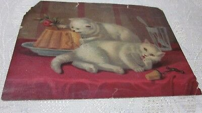 Vintage Two Tubby White Cats Lithograph Picture