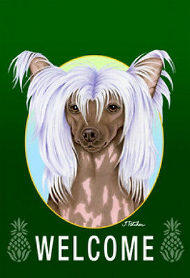 Large Indoor/Outdoor Welcome Flag (Green) - Chinese Crested 74069