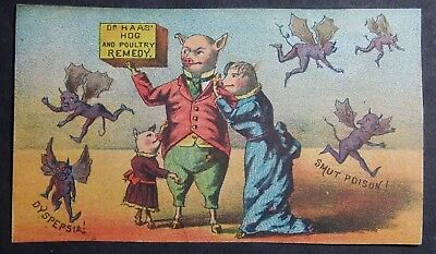 1880's Victorian Trade Card Dr Haas Cattle, Hog & Poultry Remedy Indianapolis In