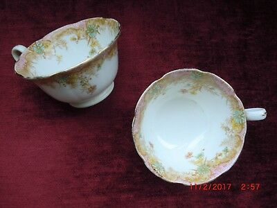 Wileman Foley Fern Pattern   (Cups x 2 )