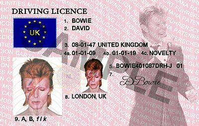 David Bowie Novelty Item (New)