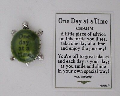 R ONE DAY AT A TIME Turtle pocket figurine charm enjoy the journey AA rehab Ganz