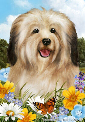Garden Indoor/Outdoor Summer Flag - Cream Havanese 180971
