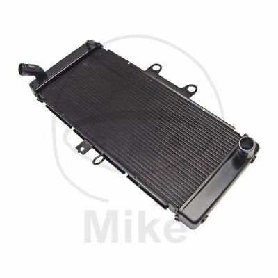 Radiator H20 Aluminum Black 425-2503
