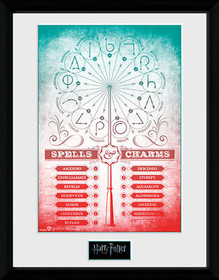 Harry Potter Spells and Charms - Mounted & Framed Print