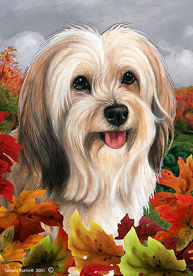 Large Indoor/Outdoor Fall Flag - Fawn Tibetan Terrier 13479