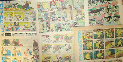 55 NAPOLEON Sunday comics by Clifford McBride  from 1945-1949