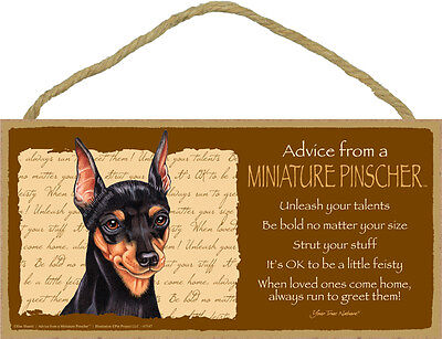 ADVICE FROM A MINIATURE PINSCHER wood SIGN wall hanging PLAQUE black puppy dog