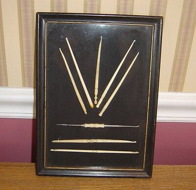 Antique Ivory Color Bone Celluloid Crochet Sewing Hooks In Display Case